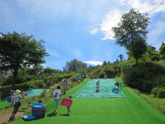 池や芝生、花木を配した緑豊かな園内をゆったり散策するだけでも気持ちの良いものですが、園内には、子供が飽きずに遊べる「プレイゾーン」や「ちびっこゲレンデ」、夏季に無料で摘果できる「ブルーベリー公園」等もあり、大人も本格的に学べる「一日体験陶芸教室」といった施設も設けられています。