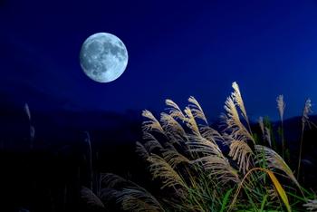 お月見というと「満月を見る行事」というイメージがありますが、じつは完全な満月でのお月見ができる「中秋の名月」ばかりではないのです。