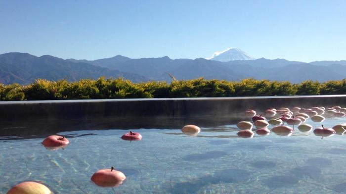 アルカリ性単純温泉PH9.3のお湯に、旬のフルーツがたっぷり浮べた贅沢露天風呂で贅沢気分を満喫できます。