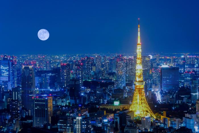 東京タワーでは、中秋の名月の日に特別なイベントを開催。月を見やすいように上部と足元を消灯する珍しいライトアップに加え、お月見階段ウォークとして、メインデッキまで600段の外階段を11時~22時まで特別夜間開放します。すすきや団子のお供えも設置されているので、お月見気分を存分に味わえますよ。
