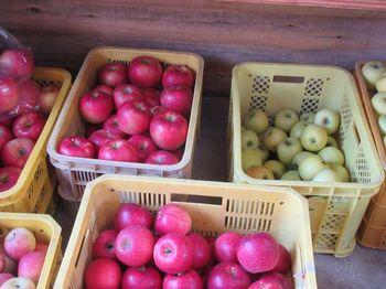 紅玉・むつ・ジョナゴールド・シナノスイートなど、栽培している品種も数多く、直売所などでは格安で購入することができますよ。タイミングが合えば、りんご狩り体験も楽しめます。