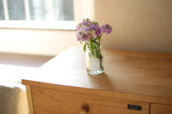 おうちに、お洒落な花瓶が無くても、大丈夫。おうちにあるシンプルな空き瓶が大活躍します!リビングのチェストの上に、キッチンカウンターの上に…お部屋にお花やグリーンがちょこっとあるだけでも、心がほっこり癒されます。