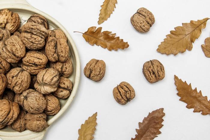 おつまみやお菓子として食べる機会が多い「クルミ」ですが、実は紀元前7000年頃から食べられていたと言われている最古の木の実です。日本でも縄文時代の遺跡から発掘されており、その時代から常食していたと考えられています。