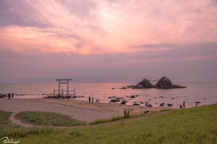 糸島の海側・山側で出会える美味しいスイーツをご紹介しましたがいかがでしたでしょうか?どれも食材や製法にこだわり、時間をかけて作られたものばかりです。是非、糸島ドライブの際には気になるスイーツを食べに足を運んでみてくださいね♪