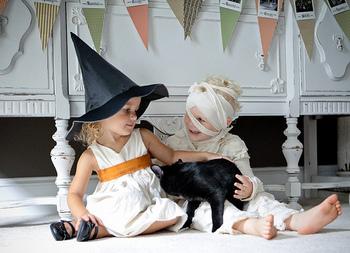 ハロウィンと言えば仮装が定番ですが、大人になると少し恥ずかしくて、なかなか挑戦できないという方も多いのではないでしょうか。オレンジ・紫・黒などのハロウィンカラーを取り入れるドレスコードを設けたり、カラーコーデちょっとだけハロウィンらしさを取り入れてみませんか?