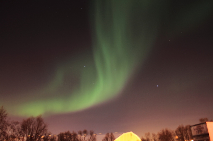 トロムソに冬に来たらやはりオーロラ鑑賞は必須!見られる見られないはまさにその時の運次第ですが、せっかく北極圏に来たならばぜひ見に行きたいですよね。トロムソ発着のオーロラツアーも多く出ていますし、ツアーに参加すると遭遇しやすいスポットにも案内してもらえますよ。