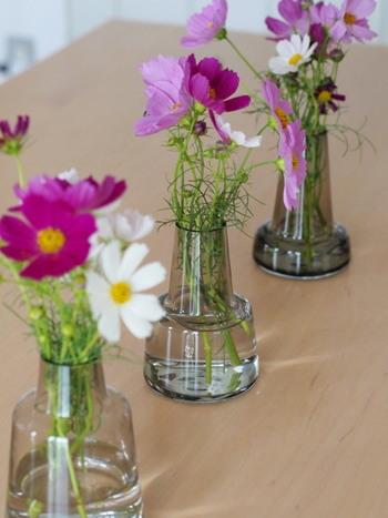同じ種類の花器を集めてリズミカルに並べたら、空間がきゅっと引き締まりました。ふんわりとしたお花なので、ゆったりと生けてみると安定感が生まれます。