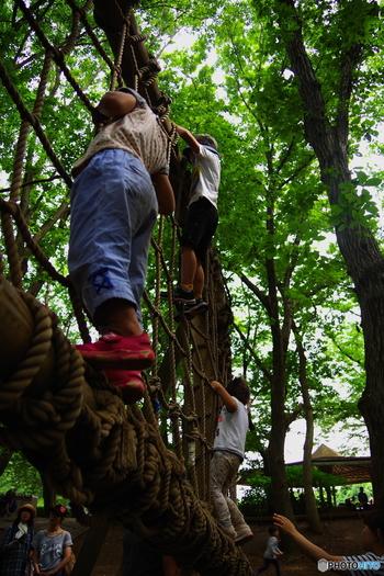 森の中にあるアスレチックエリアは、子供に大人気!たまには広い公園で、家族みんなでアクティブに過ごしてみませんか?