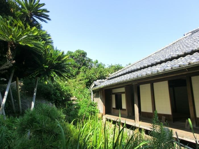 島内には、宝永元年(1704年)に建て直された平野家の家屋も。南天の床縁や桑の天井板など、趣向を凝らした細部に歴史を感じます。