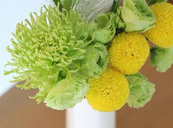 いわゆる和菊だけではなく、ピンポンマムやアナスタシアといった豪華な洋菊も人気があります。いろいろなかたちの菊を集めてまとめてみるのもいいですね。豪華ですが、シックな色味のものが多いので、ほかのお花との相性も抜群です。
