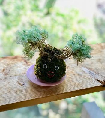 髪をふたつに結んだ女の子のような苔玉。とってもキュートですね*ふわふわの髪に見立てた植物や、顔の表情がなんとも素敵。