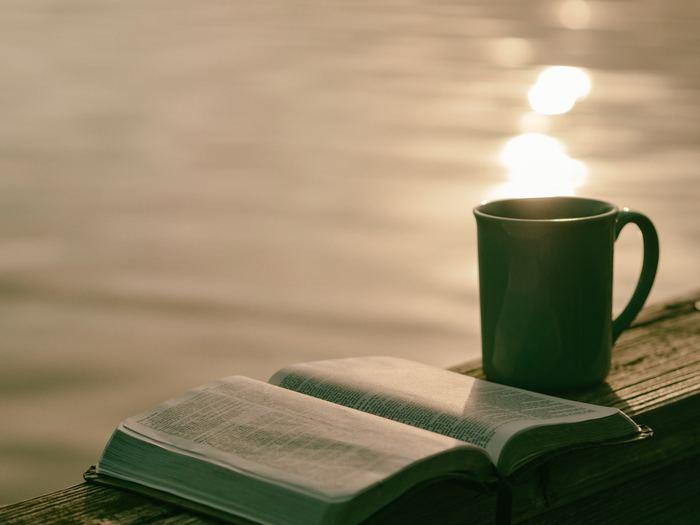 気になる本はあったでしょうか?そして旅したい気分になれたでしょうか?  本は本当にたくさんの情報と考える力をくれます。今回紹介した本以外にも良書はいっぱい、ぜひ書店に足を運んで自分だけの1冊を見つけてみて下さいね。アドバイスとしては、「ピンッ!」ときた本はとりあえず読んでみることです。  皆さんにとって最高の旅本に出会えることを願っています!
