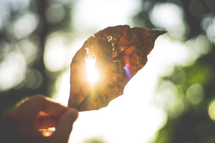 あなたの心の中にも、必要のないマイナスの感情が溜まっていませんか?それらを断捨離する習慣を身につけて、もっとシンプルな生き方を目指してみましょう!