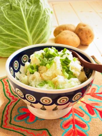 日本では、ポテトサラダに近いイメージですね。こちらのレシピでは、身近なキャベツを使って作られているのでとってもお手軽です。
