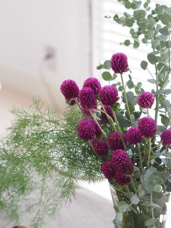 秋のお花は落ちつきのある色味のものが多く、さまざまなテイストのお部屋としっくりきます。一種類で飾るのはもちろん、たっぷりのグリーンと共に生けてみたり、同じ種類のお花を色違いでまとめてみるのも素敵です。