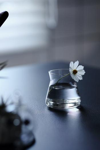 一輪だけでも、飾り方次第で存在感抜群のインテリアに。お花を生ける花器も慎重にチョイスしたくなりますね。