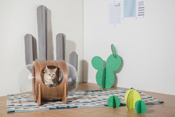 コロンとしたアクリル製のケースは猫のためのスペース。リラックスする姿が見れるから、こちらも癒されますね。