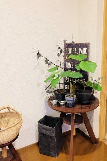 部屋の隅に小さなテーブルを置いてディスプレイスペースに。鮮やかなグリーンが目を引きます。