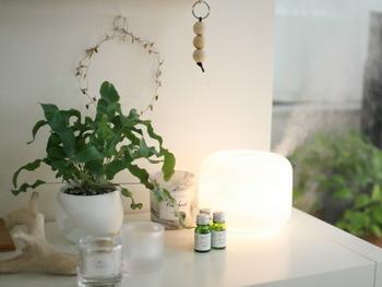 植物とアロマを置いて、リラックスできる空間にしたディスプレイです。リビングや寝室などに置くのがおすすめです。
