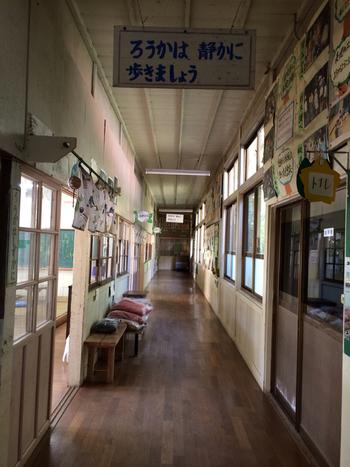 こちらは、旧老川(おいかわ)小学校の分校だった建物をリノベーションしています。「文部科学大臣奨励賞」を受賞するほどステキな校舎で、そのほとんどが今もそのまま残っています。