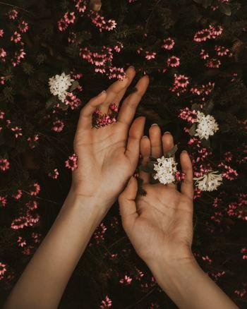 自分の所作がどのように見られているか、意識したことはありますか。物を受け取るとき、または手渡すとき、片手で済ませている。ドアを閉めるとき、物を置くとき、大きな音を立てている。あまり品がいいとは言えませんよね。手先にまで神経を行き届かせ、物は両手で扱う、静かに音を立てない、姿勢を正す。少しの意識でできること、始めてみませんか?