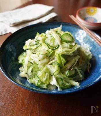 キャベツときゅうりは、塩でもんで浅漬けにしても美味しいベストコンビ。ミョウガやショウガも加えて、爽やかな風味に。
