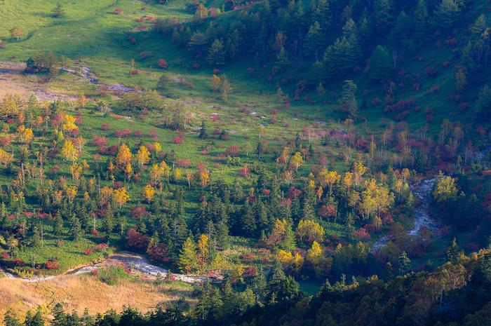 秋晴れの日は、空と山々の景色のコントラストが美しい中之条町。紅葉や自然の美しい景色を楽しみに、是非おでかけしてみてくださいね。