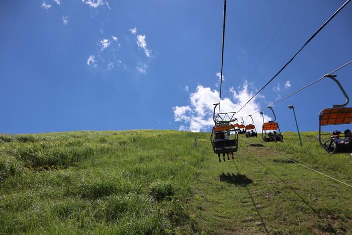 伊豆半島の東に位置する標高580mの「大室山」。山全体が国指定の天然記念物のため、徒歩での登山は禁止され、リフトに乗り6分ほどで山頂に着きます。