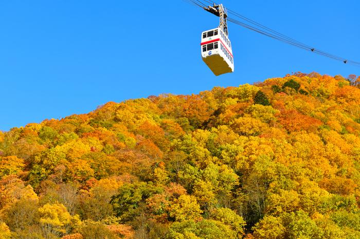 岐阜の奥飛騨にある「新穂高ロープウェイ」は、360°アルプス山脈に囲まれ、2本のロープウェイを乗り継ぎながら季節の移ろいと雄大な自然を体感できるスポットです。日本で唯一の2階建てロープウェイとしても知られています。