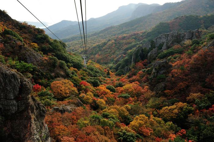 ごつごつした深い渓谷と、色とりどりに染まった紅葉も見事ですね。