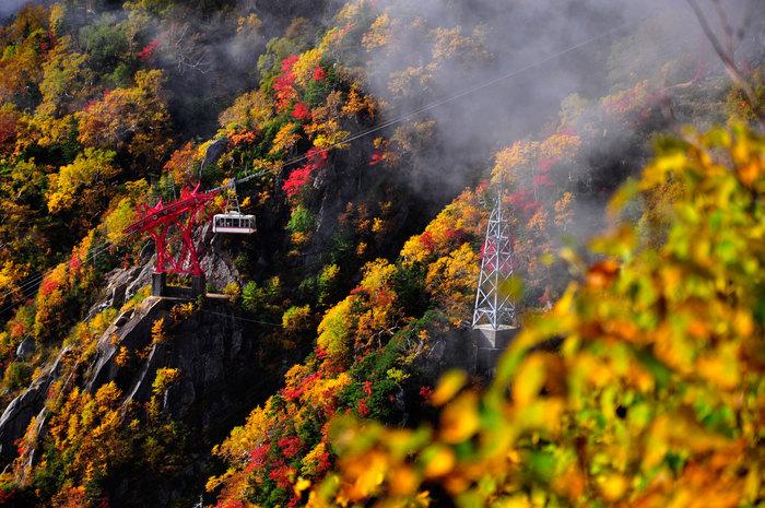 今回の旅の目的は、「ロープウェイに乗って絶景を見ること」。四季折々の景色を見せてくれる山や空を、ロープウェイを使って高いところから、いつもとは違う目線で楽しんでみませんか?