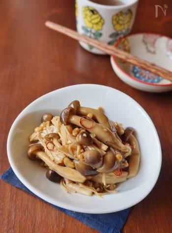 炒めたきのこをごま油やニンニクと和えて作る「キノコたっぷりピリ辛ナムル」。餃子のお供として、レタスと和えてサラダ仕立てにも。様々変化してくれる万能レシピです。