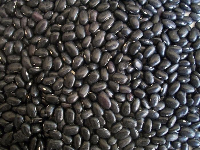 黒豆とは、皮が黒い大豆のことで、大粒で上質な丹波黒などが有名です。10~12月上旬に収穫。イソフラボンはもちろん、黒い皮によるアントシアニンや、ビタミンEなど健康のためにメリットのある成分がいっぱい。料理に時間がかかるイメージがあるかもしれませんが、工夫次第で簡単にできます。