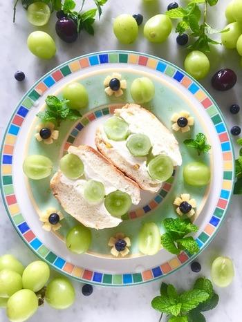 シャインマスカットの旬は、8~10月頃、ちょっと贅沢な季節のフルーツを使って、素敵なフルーツサンドを作ってみませんか?こちらは、水切りヨーグルトとクリームチーズを使ったクリームを塗っています。