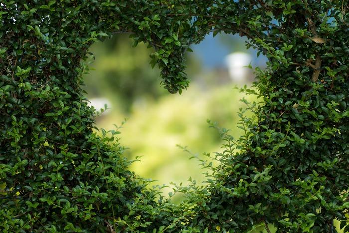 また、いい人間関係を作っていくのに欠かせない4つの言葉を意識して使ってみましょう。  「ありがとう」という感謝の言葉。「嬉しい」という喜びの言葉。「大好き」という愛情を表す言葉。「素敵」という褒める言葉です。  この言葉を言われて悪い気持ちがする人は、ほとんどいません。ポジティブな言葉の力を借りて、人間関係を変えていきましょう。