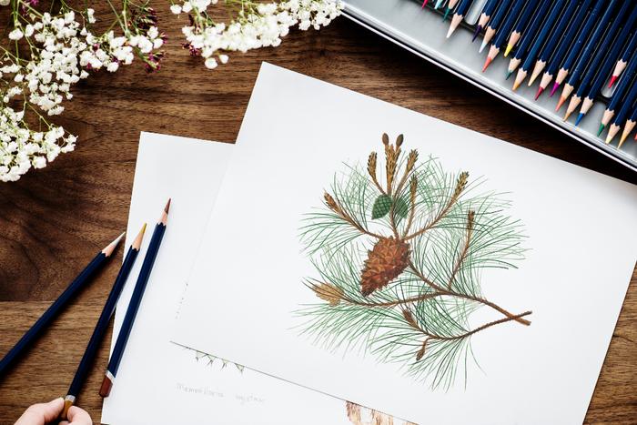 絵を描く、本を読む、パンを焼く、楽器演奏をする…など、好きなことに没頭する時間を作ってみましょう。好きなことに取り組むことは集中力と創造性をいつも以上に高めることができると言われています。大好きな何かに没頭して、心をリフレッシュさせれば、今まで気がつかなかった新しい発見ができるかも。