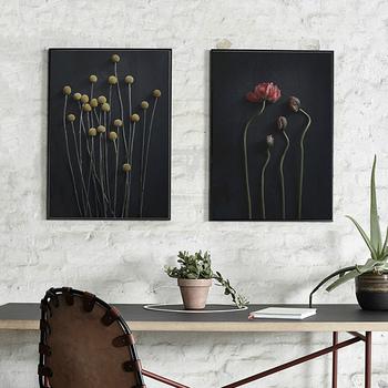 2012年にコペンハーゲンで設立されたブランド、「Paper Collective(ペーパーコレクティブ)」。まるで本物のお花や写真のようにも見えるイラストは、存在感抜群で華やかさも満点の一枚。生命力を感じさせるようなデザインは、違うイラストを並べて飾っても雰囲気が出ますね。