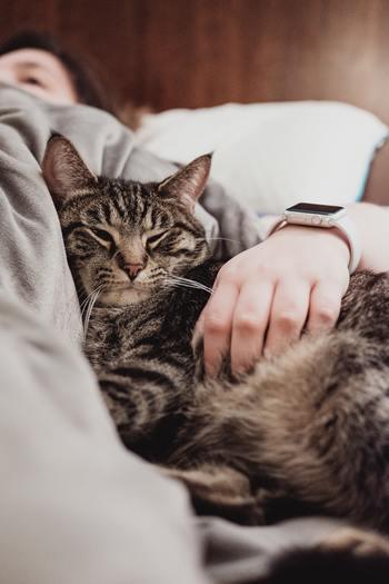 ペットを飼うことが可能であれば、自分の相棒を迎え入れるという方法も独りを感じなくて済む方法です。ペットと暮らすことは命を預かる大きな決断ですが、家に帰れば自分を待っていてくれる相手がいると思うだけで気持ちが違いますよね。