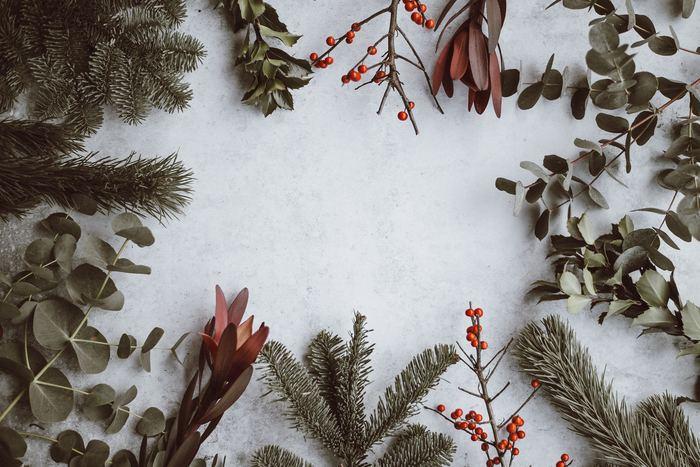 素敵なリースやスワッグを作るには、素材選びが大切です。クリスマスらしい植物や小物を上手に取り入れて、世界でひとつだけのオリジナル作品を作りましょう!まずは、リースやスワッグにぴったりな、おすすめの材料をひとつずつ紹介します♪