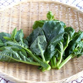 「ツルムラサキ」の旬は、6〜8月の夏です。ツルムラサキという名前ですが、食用には茎が緑色のものの方が向いています。  美味しいツルムラサキの選び方は、おひさまをたくさん浴びて濃い緑色をしていること。葉っぱが分厚いものがおすすめです。
