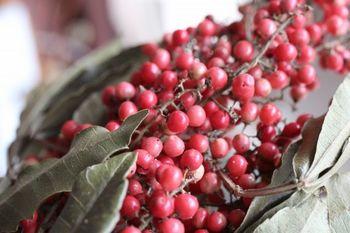 ペルー産のペッパーベリーは、ほのかに漂う胡椒の香りが特徴です。ドライになっても可愛らしい色味を保ってくれるので、リースの彩りにぴったりです。クリスマスリースにも人気の花材です。
