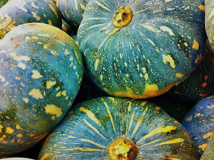 まだまだ美味しい季節。「かぼちゃ」のいつもひと味ちがうレシピ