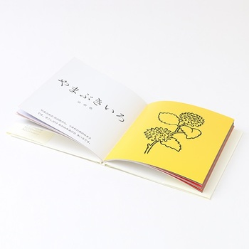 あさぎいろ・ももいろ・やまぶきいろ…日本人が大切にしてきた美しい伝統色。素敵なイラストとともに色の名前と由来について学べる「22の色」は、世代を超えて大切に読み継いでいきたい一冊です。