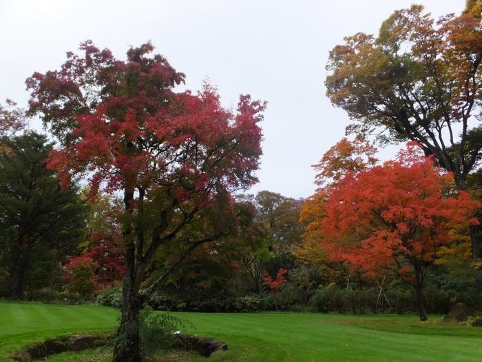 ガーデンには、ラリックがこよなく愛した草花たちも。秋には中庭で見事な紅葉も見られるので、カフェレストランでゆったり過ごすのもおすすめです。