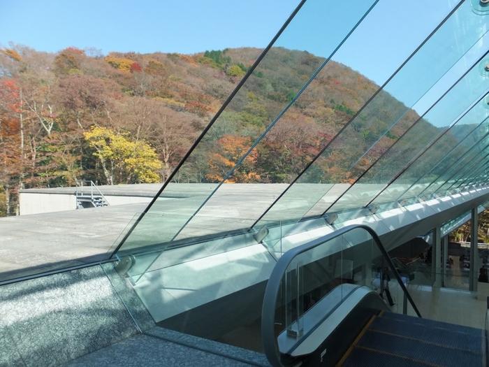 ガラス張りで明るく開放感のある美術館の館内からは、紅葉に染まる美しい山々の景色も楽しめます。自然の多い箱根ならではの美術館を楽しめますよ。