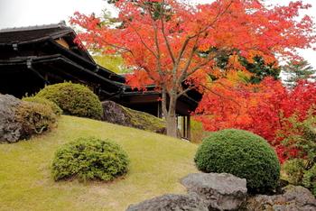 秋はとにかく庭園の紅葉が美しいことでも有名です。苔庭の風景を眺めながら、季節のお菓子をいただける茶室もあるので、美術鑑賞がてら一服いただくのも素敵です。