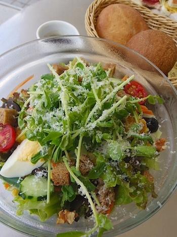 ランチセットは、平日と休日とで違うバリエーションに。こちらは平日のサラダランチセット。ボウルにたっぷり盛ったサラダと、パン2種類、ドリンクのセットです。