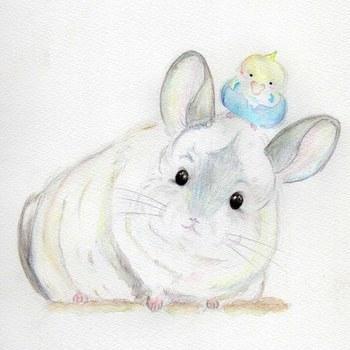 """こちらは、まさに""""水彩画のタッチ""""を活かして創作された絵です。  まるみのある動物の体には、水彩画のもつ柔らかい質感がぴったり。かわいいペットをモデルに描いてみてはいかがでしょう?"""