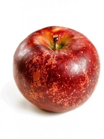 最近では馴染みのりんごよりもずっと深い、紅色のりんごが登場しています。代表的な物が信州産の「秋映(あきばえ)」という品種です。りんごの果皮の色は寒い地域で育てられた物ほど色づきが良くなるのですが、完熟すると更に黒っぽい紅色になるので、皮の色で熟しているかどうかわかりやすい品種といえます。