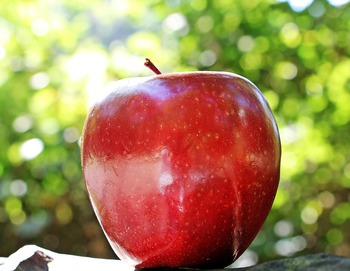 りんごによっては表面がピカピカに輝いているように見える物もあります。これはりんごが熟すと分泌される天然成分による物で、人工的にワックスなどを塗った物ではありませんので皮ごと食べても問題ありません。ただ、ピカピカを通り越してベタベタしてくる品種もありますし、りんごが熟しきった証拠でもあるので、ピカピカのりんごは早めに食べましょう。